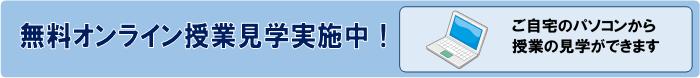 online_visit.png